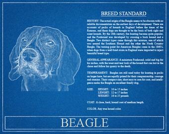 Beagle Portrait / Beagle Art / Beagle Wall Art / Beagle Print / Beagle Gift