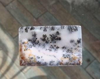 Landscape dendritic opal cabochon from Kazakhstan