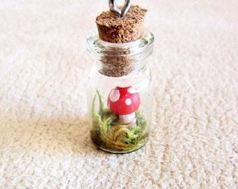Mini mushroom in a glass bottle