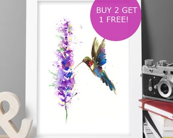 Buy 2 Get 1 FREE! Humming bird painting print Original LIMITED Edition Signed Watercolour Thick 300 gsm