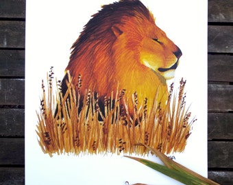Lion in the grass print