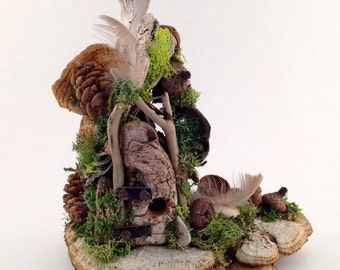 Mushroom Manor