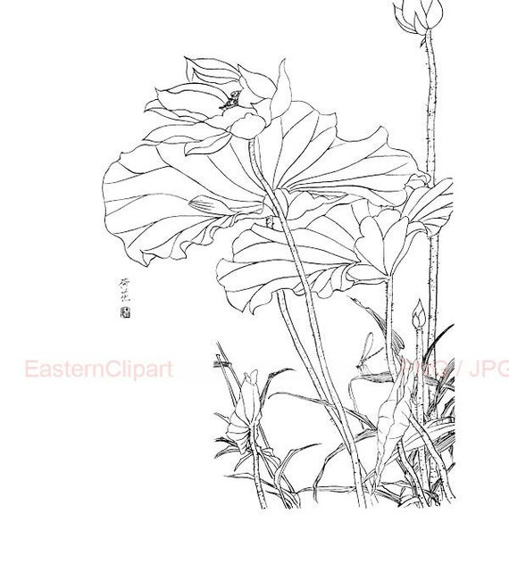 Line Drawing Etsy : Items similar to chinese line drawing png digital