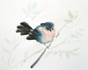 Bird on branch painting Bird watercolor painting Original watercolor artwork 8 x 10 in Bird art Finch painting gift for bird lover
