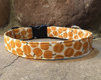 dog collar, thanksgiving dog collar, autumn dog collar, fall dog collar, pumpkin dog collar, holiday dog collar, brown dog collar, orange
