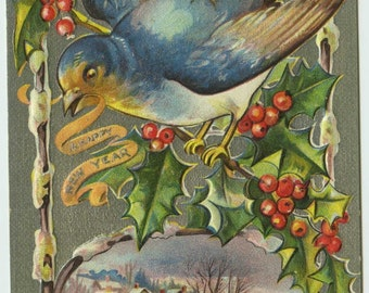 New Year Bird Series c1910 Embossed Postcard