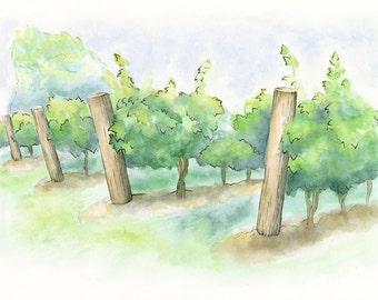 Vineyard Watercolor Painting - Giclée Print of Hand Painted Original Art