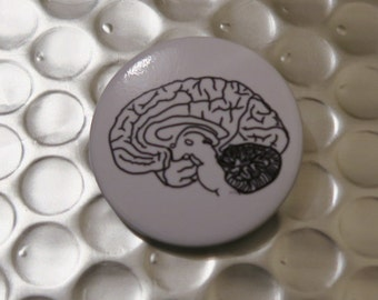 Pin Badge - Human Brain (Medial) Anatomy