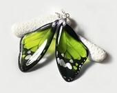 Butterfly Wing Earrings - Transparent Clear Glass-like Earrings - Silver Plated - Summer Dangle Green Multicolor