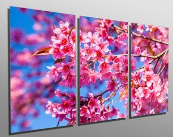 Metal Print - Pink Cherry Blossom - 3 Panel split (Triptych) - Multi Panel Metal wall art HD aluminum prints for home decor, interior design