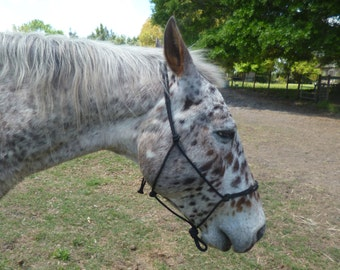 """Horse size Rope Halter in 1/4"""" rope"""