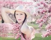 DIGITAL Spring Background, backdrop, spring magnolias, for photographers, photography, photos