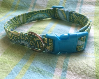 Blue/lime green paisley collar