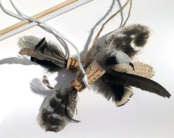 A Little Birdy - Cruelty Free Cat Feather Teaser