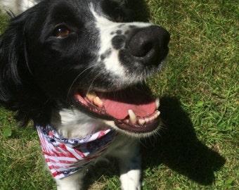 4th of July Dog Bandana - american flag