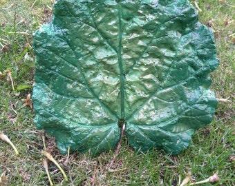 Concrete Baby Rhubarb Leaf