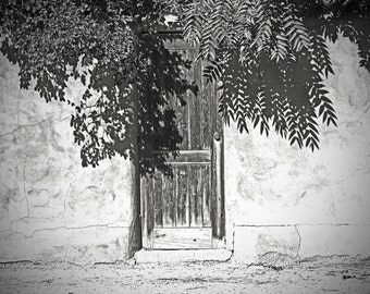 Vintage doorway, black and white photograph, fine art photo, home decoration, stucco wall, rustic, tree, shadow, wooden door, southwest