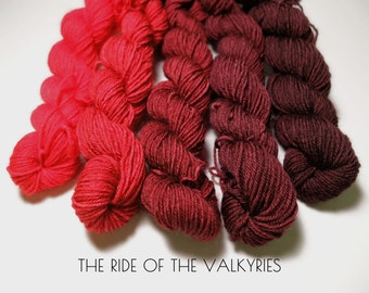 The RIDE of the VALKYRIES Mini Skein set 100% Superwash BFL