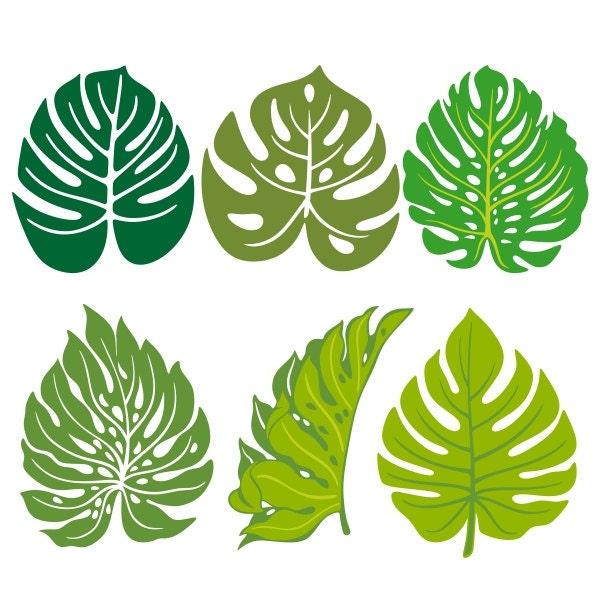Palm Leaves Cuttable Design