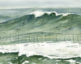 Wave, sea, ducks