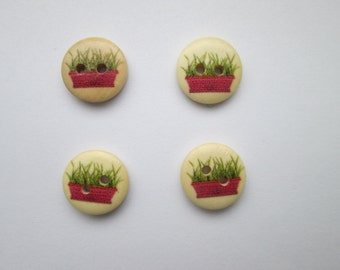 Chives in pot 4 wooden buttons 15 mm Ø