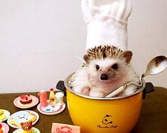 Chef Costume - Hedgehog Costume – Guinea Pig costume - Squirrel Costume - Small Rat Costume - Chinchilla Costume - Handmade