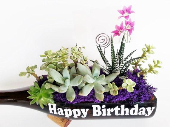 Succulent Gift Happy Birthday Gifts Mom Grandma Girlfriend