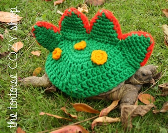 Dragon Tortoise Cozy