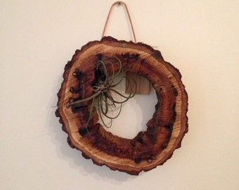 Walnut Succulent Wreath