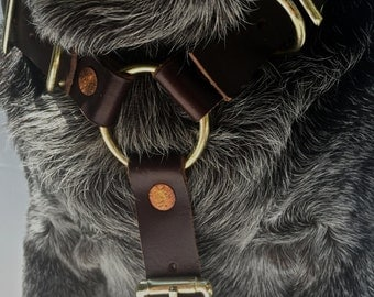 The Leather Dog Harness