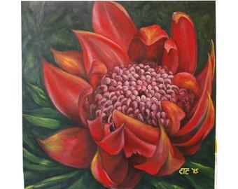 Rare type of Protea: Serruria flower. Original oil painting by Carina Turck-Clark