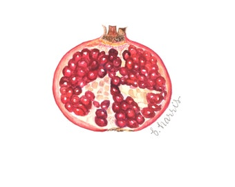 original watercolor - pomegranate interior