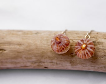 Sterling Silver Red Opihi shell sphere resin earrings-nature inspired-moss orb-terrarium-gift for her/eco-woodland sphere