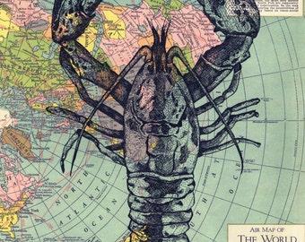 Lobster ~Fine Art Print by Artist D. Rosendahl~ Signed Giclee
