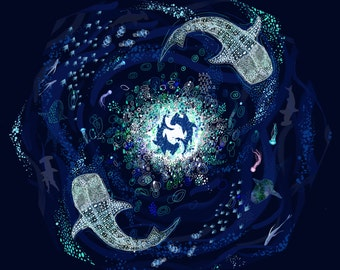 A3 print // ECO Oceans #savethesharks