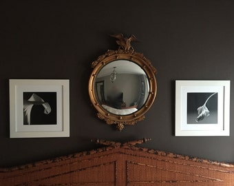 Pair of Robert Mapplethorpe framed photos (not originals)