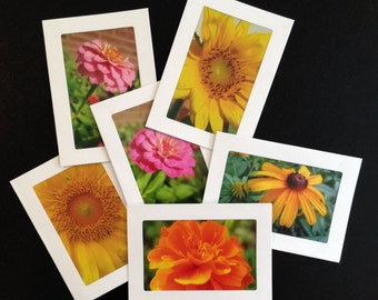Mixed Set of 6 Flower Photograph Blank Note Cards