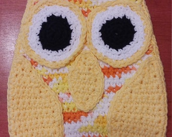 Owl Pot Holder and Cloth