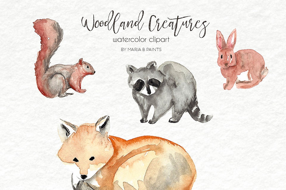 Watercolor Clip Art Woodland Forest Creatures Animals