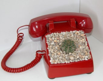 Red Telephone Planter