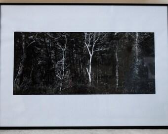 Framed Black & White landscape photograph