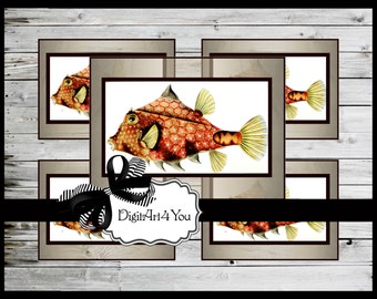 Greeting Card/Cards/Puffer Fish/Fish/Aquatic/Exotic/Nature/Natural/ Antique/Retro/Unusual/DIY Card/Vintage Collage//Collage/Blank Cards