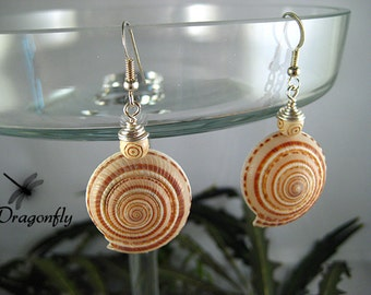Natural Round Spiral Sea Shell Drop Earrings
