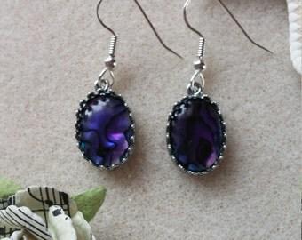 Purple paua shell earrings