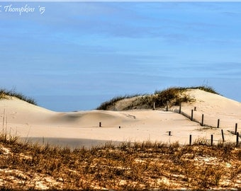 Outer Banks, Sand Dunes, OBX, Sea Oats, North Carolina, Seashore