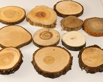 10 Mixed Wood Slices, Assorted Pack of Wood Slices, Tree Slices, Branch Slices