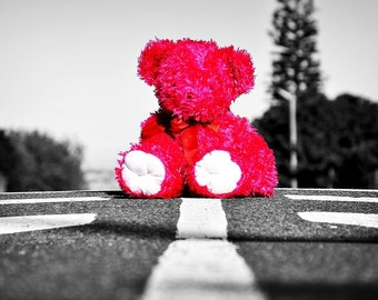 Pink teddy Bear in the Street
