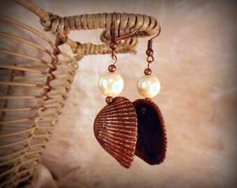 Copper Dangle Earrings, Seashell/ Pearl Earrings, real natural copper plated antiqued seashell, electroformed seashell, beach boho earrings