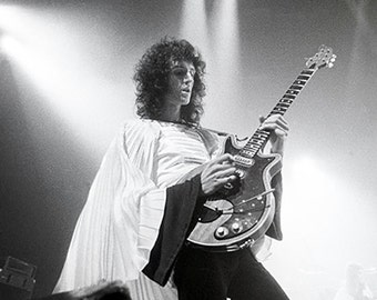 Brian May/Queen poster