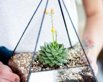 Big Piramyd Glass Planter / Handmade Glass Succulent Terrarium / Glass Display Box / Stained Glass Geometric Pot